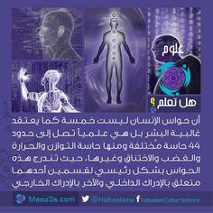 Science, Movies, Movie Posters, Films, Film Poster, Cinema, Movie, Film, Movie Quotes