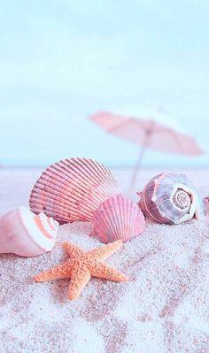 Beach and shells image peach wallpaper, ocean wallpaper, pink summer, pink beach,