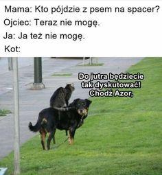 Wtf Funny, Funny Memes, Hilarious, Funny Lyrics, Polish Memes, Happy Animals, Haha, Anime, Random