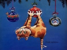 Chat Noël - An illustration by Gary Patterson Christmas Animals, Christmas Cats, Christmas Humor, Merry Christmas, Christmas Sweets, Christmas Greetings, Christmas Ornaments, I Love Cats, Crazy Cats