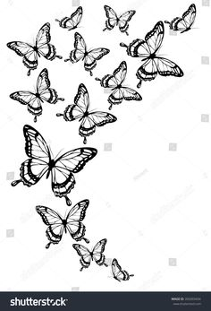 Discover recipes, home ideas, style inspiration and other ideas to try. Butterfly Illustration, Butterfly Drawing, Butterfly Painting, Butterfly Wallpaper, Butterfly Flowers, Butterfly Sleeve Tattoo, Butterfly Tattoos For Women, Butterfly Tattoo Designs, Butterfly Design