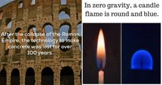 50 Facts You Probably Didn't Need To Know