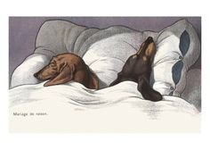 Mariage de Raison with Sleeping Dogs in Bed Giclee Print by Alexandra Day at Art.com