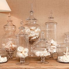 lovely apothecary jars all grouped together, filled with shells