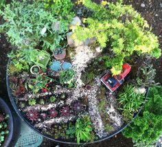 Miniature Farm Garden bird's eye view.
