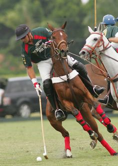 JEFF HALL - United States Polo Association