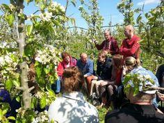 Allerlei fruit oogsten en eitjes rapen in de Fruittuin van West