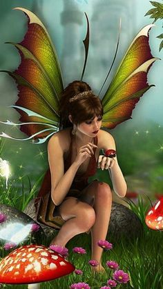 Fairy and Ladybug Elfen Fantasy, 3d Fantasy, Fantasy Kunst, Fantasy Artwork, Kobold, Elves And Fairies, Fairy Pictures, Love Fairy, Beautiful Fairies