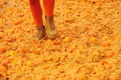 Battle of the Oranges: an annual fruit fight in Ivrea, Italy