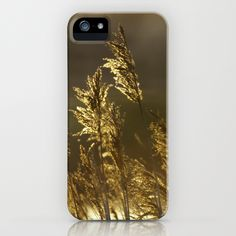 River Reeds iPhone Case
