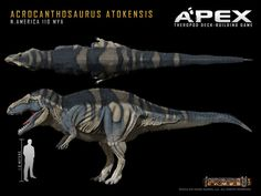 Acrocanthosaurus atokensis by Herschel-Hoffmeyer on deviantART