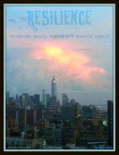 Pin on Psychonephrology.com  Building Resilience Meme
