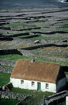 County Galway is where my Great-Grandmother Mary M. Cottage On A Landscape, Inishmaan, Aran Islands, County Galway, Ireland. Irish Images, Irish Cottage, Coastal Cottage, Cottage Art, Voyage Europe, Ireland Landscape, Ireland Travel, Cork Ireland, Ireland Vacation