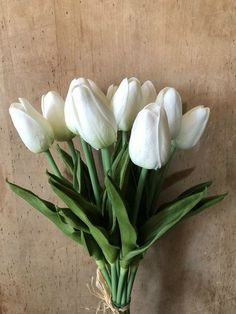 broker of English advertising pots White Tulip Bouquet, White Tulips, Photography Backdrops, Bloom, Touch, Pretty, Flowers, Plants, Advertising