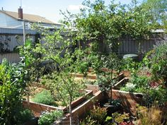 Urban Permaculture Design and Construction