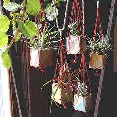 Mini Hanging Planting  ....SO my only choice is to have planters and place them on the balcony of my flat. However, if they are more than ten, they do take a lot of space, even if they are small, so I was forced to find a solution for this problem. This is how I realized i should use hanging planters and these Mini Hanging Planters seem perfect for my purpose and for the baby flowers I have.