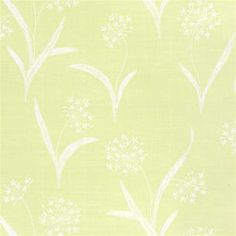 Queen Anns Lace #wallpaper in #green from the Serendipity collection. #Thibaut