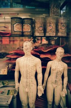 Acupuncture is a way of providing relief from a variety of ailments and for improving health. Find out how you can slow down the aging process with acupuncture. Ayurveda, Pilates, Eastern Medicine, Coaching, Chinese Herbs, Acupuncture Points, Thai Massage, Traditional Chinese Medicine, Qigong