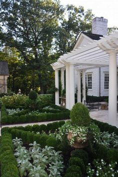 The boxwoods are great in this formal structure while giving space for other types of plants too.