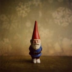 gnomewhatimsayin'?