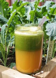The Ovary Protector Juice. Ingredients: 3 carrots, 1 green apple, 1 and 1/2 cup kale, 1 cup cilantro, 1/2 collard greens, 1/2 in. ginger root, 1/2 lemon ☽♡☾