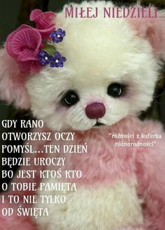 Przysłowia Good Night, Good Morning, Teddy Bear, Kawaii, Humor, Funny, Animals, Text Posts, Sunday