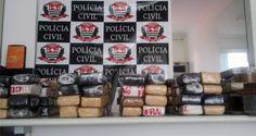 Uma operação da Polícia Civil resultou na apreensão de cerca de 50 quilos de maconha na manhã desta ...
