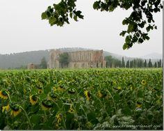 Italy Off the Beaten Path ~ San Galgano and the Sword in the Stone
