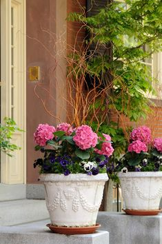 Give a royal feel to your ornate pottery arrangement by using pink hydrangeas and arrange them in between smaller flowers to look like a flower crown. You can even use wood branches to make the flower crown look fit for a fairy queen. Hydrangea Potted, Hydrangea Garden, Hydrangea Flower, Garden Shrubs, Garden Pots, Flowers Perennials, Planting Flowers, Flower Gardening, Container Plants