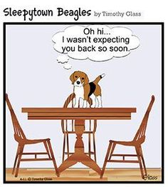 """Click visit site and Check out Cool """"Beagle"""" T-shirts. This website is superb. Tip: You can search your name or your favorite shirts at search bar on the top. #beagle #site:beaglepuppy.website"""
