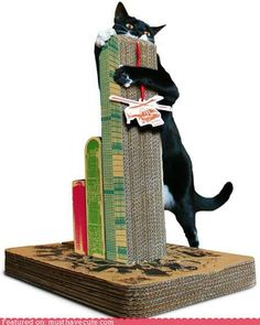 As if cats don't already know that they own the world, now you can give them their own cardboard city to destroy. I have to admit, I bought one the moment I saw it. How could I resist?