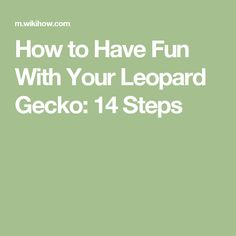 How to Have Fun With Your Leopard Gecko: 14 Steps