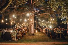 enchanting olive grove wedding enchanted jasmine and wedding #ForestWedding #ReceptionFairyLights