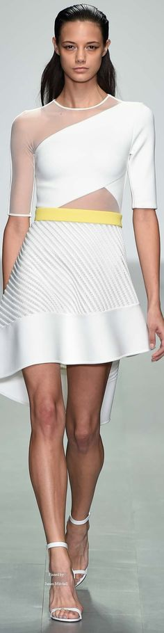 David Koma  Collection Spring 2015 Ready-to-Wear