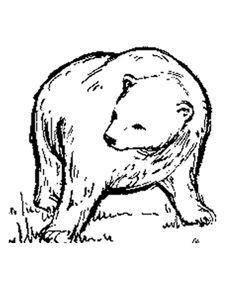 Big brown bear coloring pages ~ Alaska Moose Coloring Page | animals | Animal coloring ...