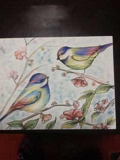 Bahar dalları üzerindeki kuşlar