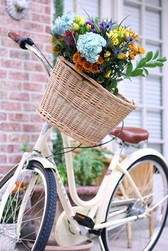Bicycles & Baskets