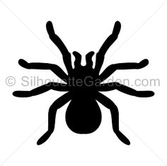 Tarantula silhouette clip art. Download free versions of the image in EPS, JPG, PDF, PNG, and SVG formats at http://silhouettegarden.com/download/tarantula-silhouette/