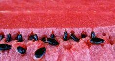 ما هي فوائد بذور البطيخ لجمال البشرة؟