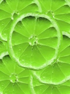 Google Image Result for http://www.photo-dictionary.com/photofiles/list/4049/5435lime_texture.jpg