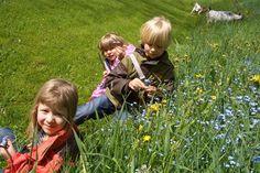 Unsere kleinen Gäste genießen die Sonne auf der Wiese.  http://www.ponyhof-familienhotel.at