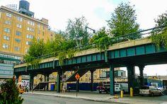 Highline Park, New York © Susanne Zöhrer
