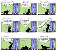 Tudo tem que ser do jeitinho deles! hehe #gatos