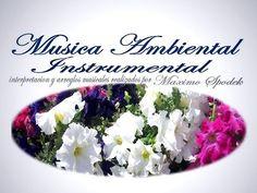 Música Celta Alegre, Épica y Hermosa - 2 Horas que te Harán Vibrar de Emoción - YouTube