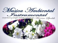 LA MEJOR MUSICA AMBIENTAL SUAVE Y AGRADABLE OFICINAS CONSULTORIOS ETC PIANO INSTRUMENTAL BOLEROS - YouTube