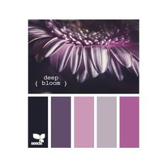 Design Seeds®: For All Who Love Color | Search ❤ liked on Polyvore featuring home, bed & bath, bath, colors, backgrounds, design seeds, colours and palettes