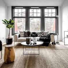 Dark Window frames against pale walls will show off simple blinds perfectly. There is no need for curtains Grey Window Frames, Painted Window Frames, Grey Windows, Window Frame Colours, Living Room Decor, Living Spaces, Bedroom Decor, Interior Windows, Interior Decorating