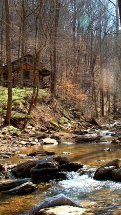 rustic looking and completely surrounded by woods. also the stream nearby is a huge plus.