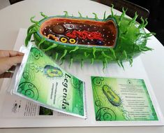 Cell made out of cake Science Project Models, Cell Model Project, Animal Cell Project, Science Models, Cell Project Ideas, Biology Projects, School Science Projects, Stem Projects, Projects For Kids