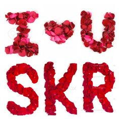 Embedded image permalink Keep Calm And Love, Katrina Kaif, Shahrukh Khan, Embedded Image Permalink, King, Rose, Pink, Roses